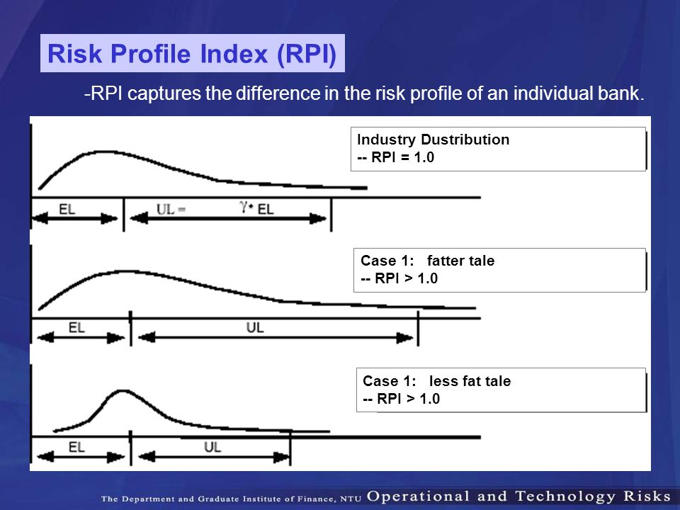 Risk Profile Index (RPI)