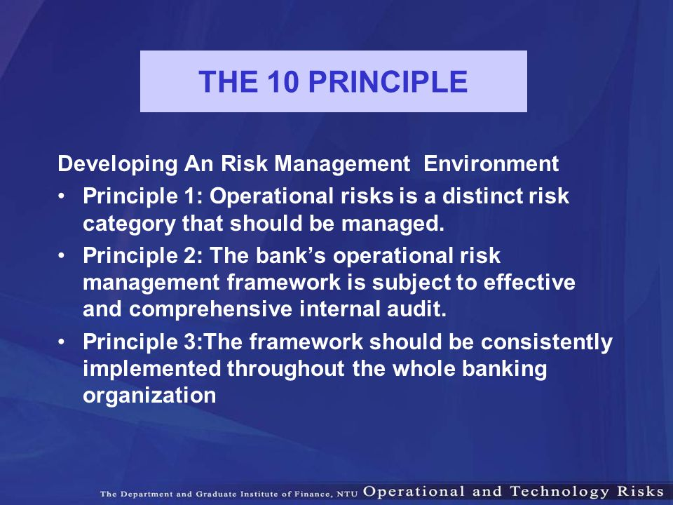 THE 10 PRINCIPLE Developing An Risk Management Environment