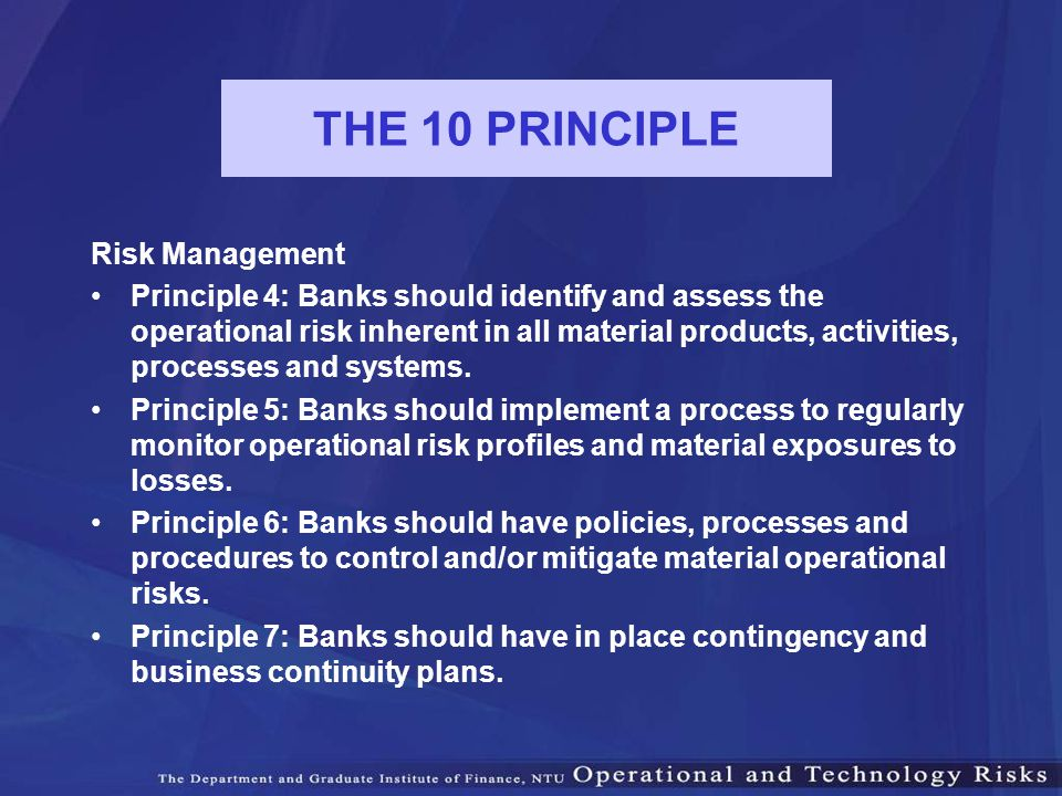 THE 10 PRINCIPLE Risk Management