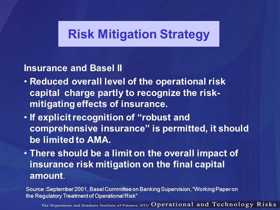 Risk Mitigation Strategy