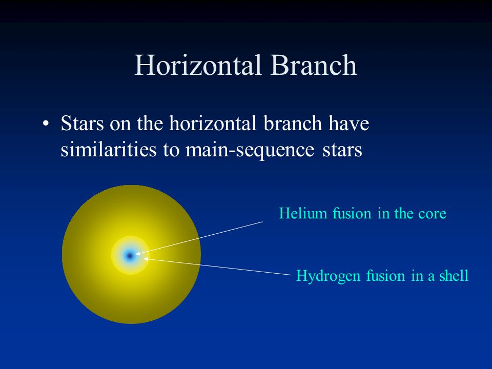 Horizontal Branch Stars on the horizontal branch have similarities to main-sequence stars. Helium fusion in the core.