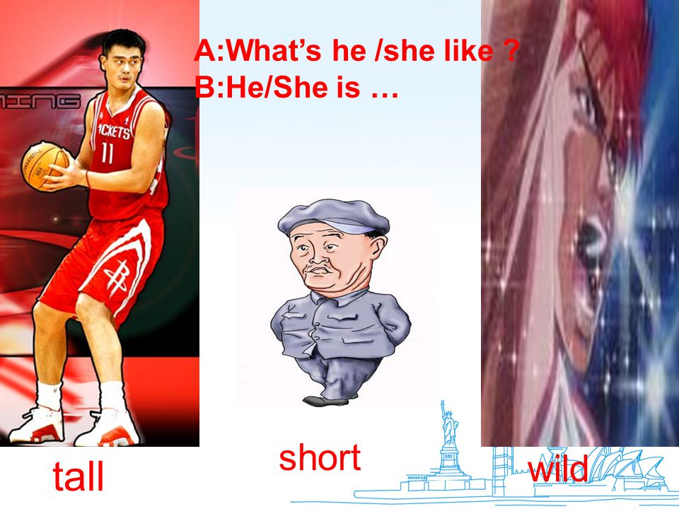 A:What's he /she like B:He/She is … short wild tall
