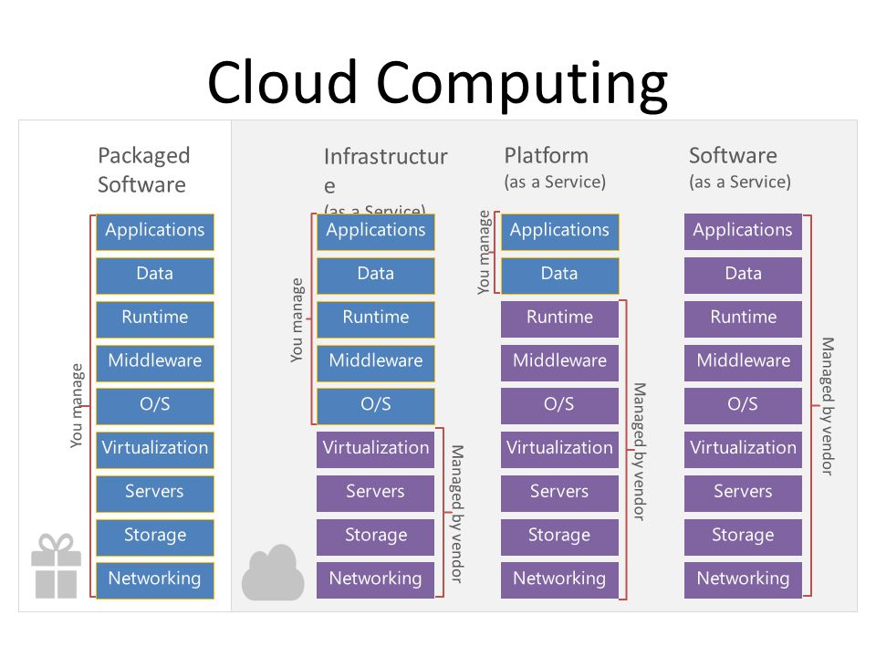Cloud Computing Packaged Software Infrastructure Platform Software