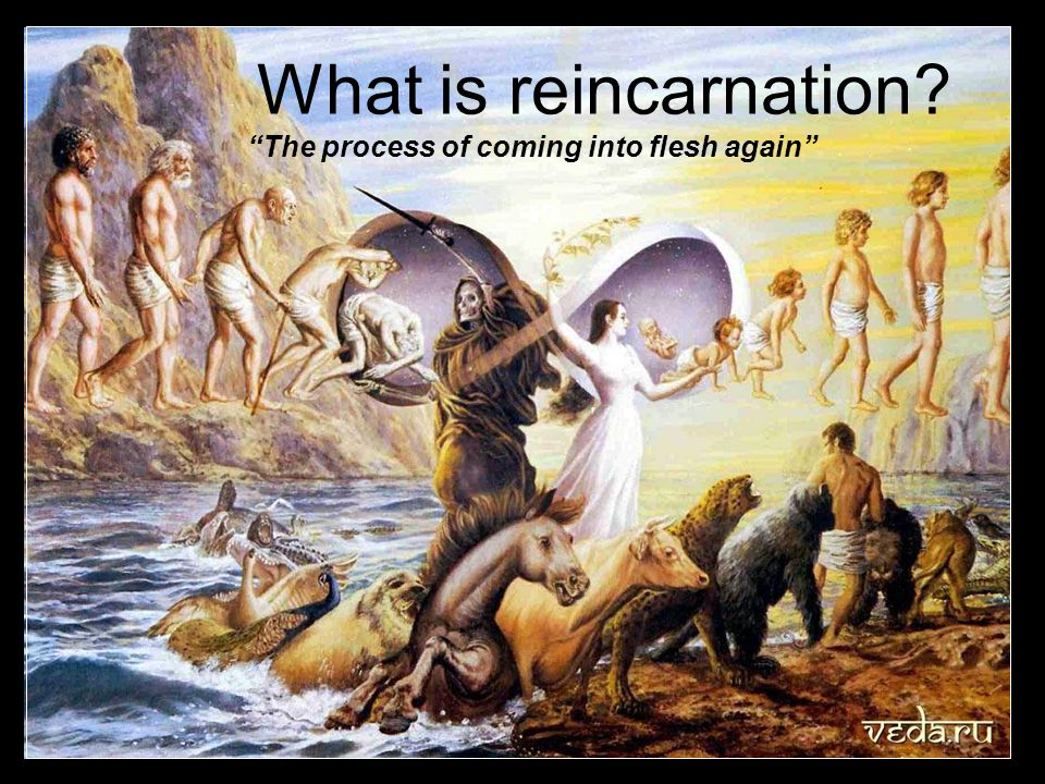 What is reincarnation The process of coming into flesh again