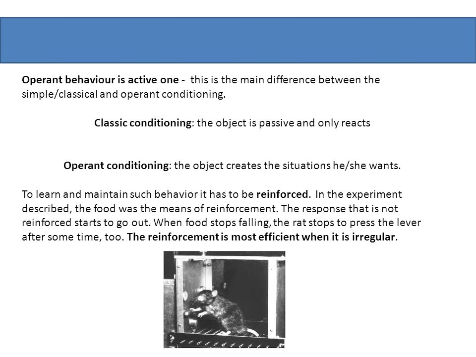 Classic conditioning: the object is passive and only reacts