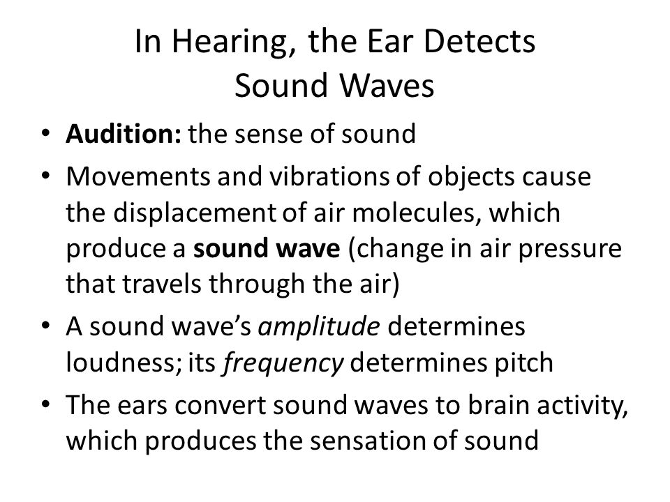 In Hearing, the Ear Detects Sound Waves