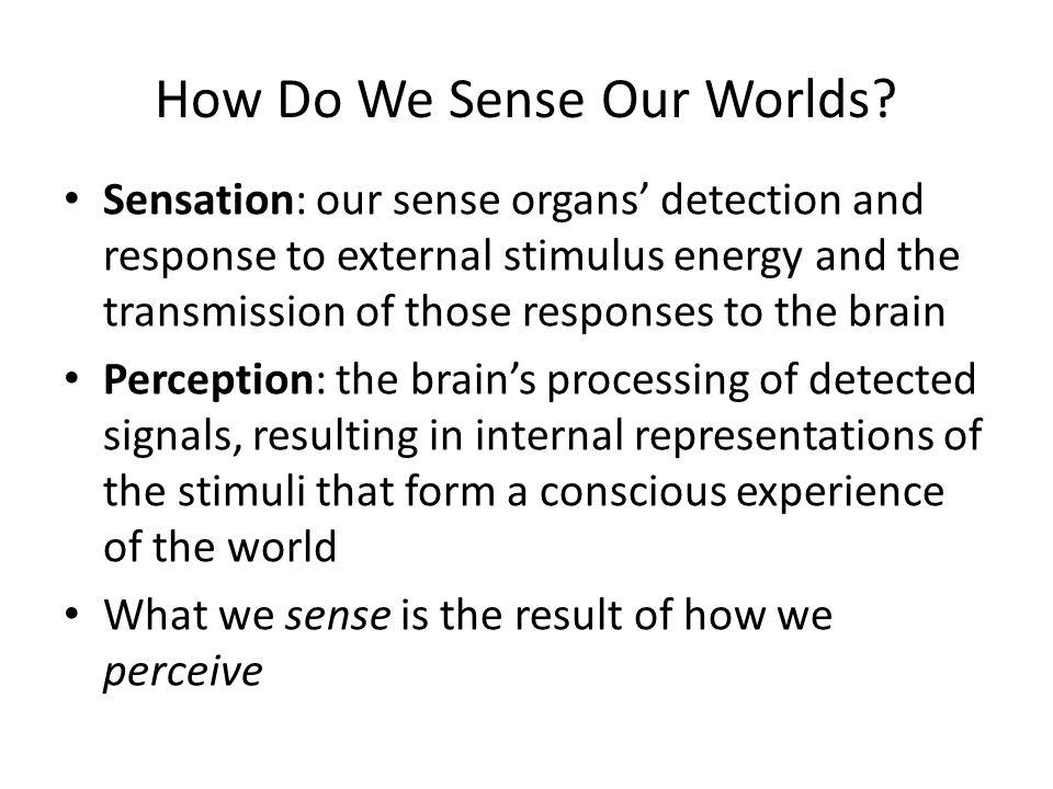 How Do We Sense Our Worlds