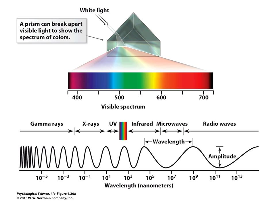 FIGURE 4.20a The Color Spectrum