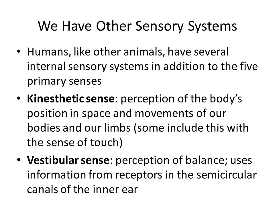 We Have Other Sensory Systems