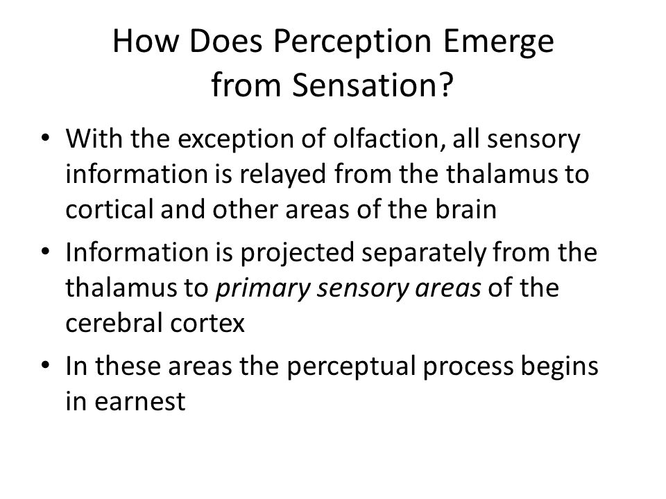 How Does Perception Emerge from Sensation