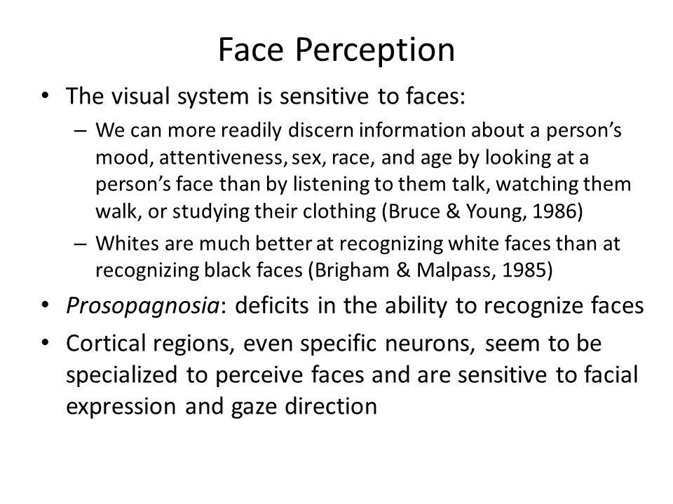 Face Perception The visual system is sensitive to faces: