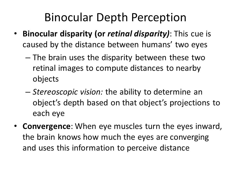 Binocular Depth Perception