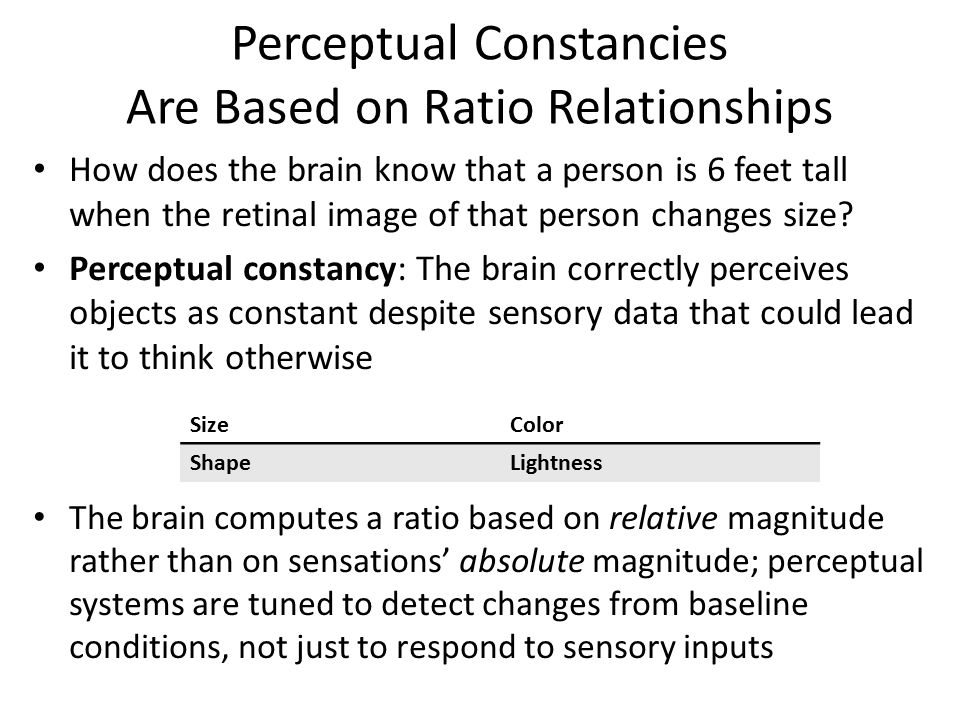 Perceptual Constancies Are Based on Ratio Relationships