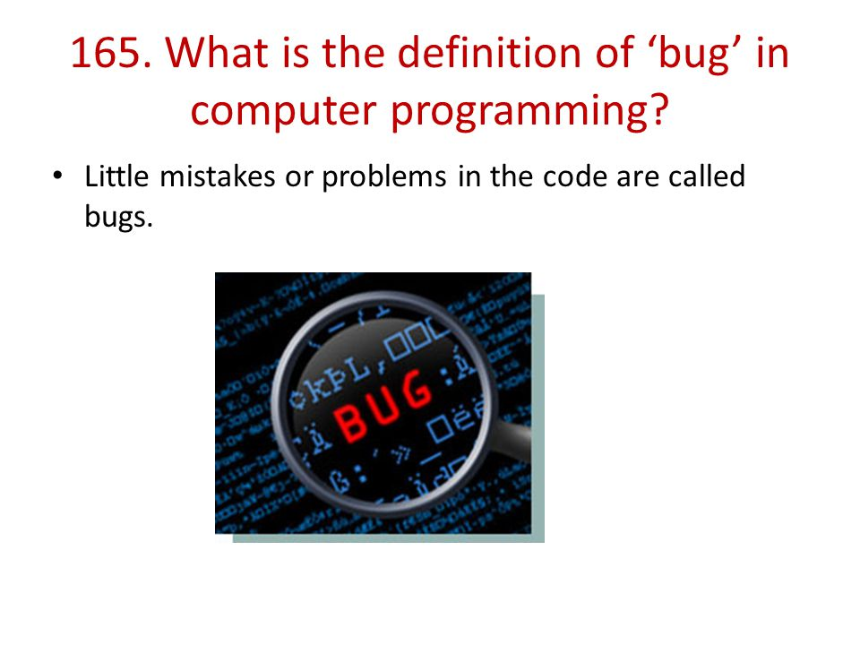 165. What is the definition of 'bug' in computer programming