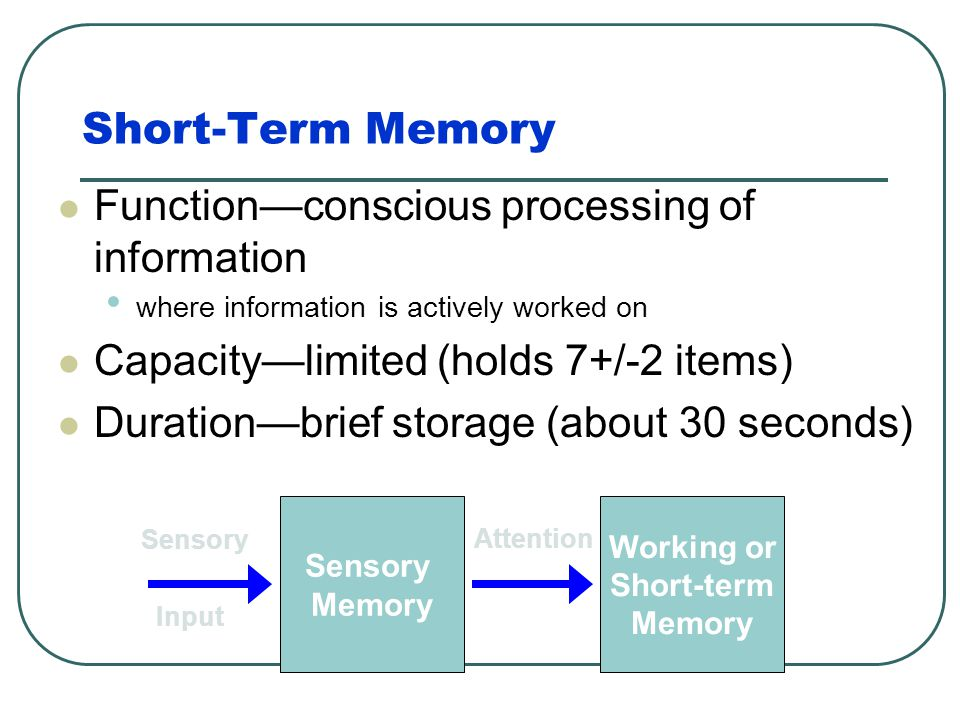 Short-Term Memory Function—conscious processing of information