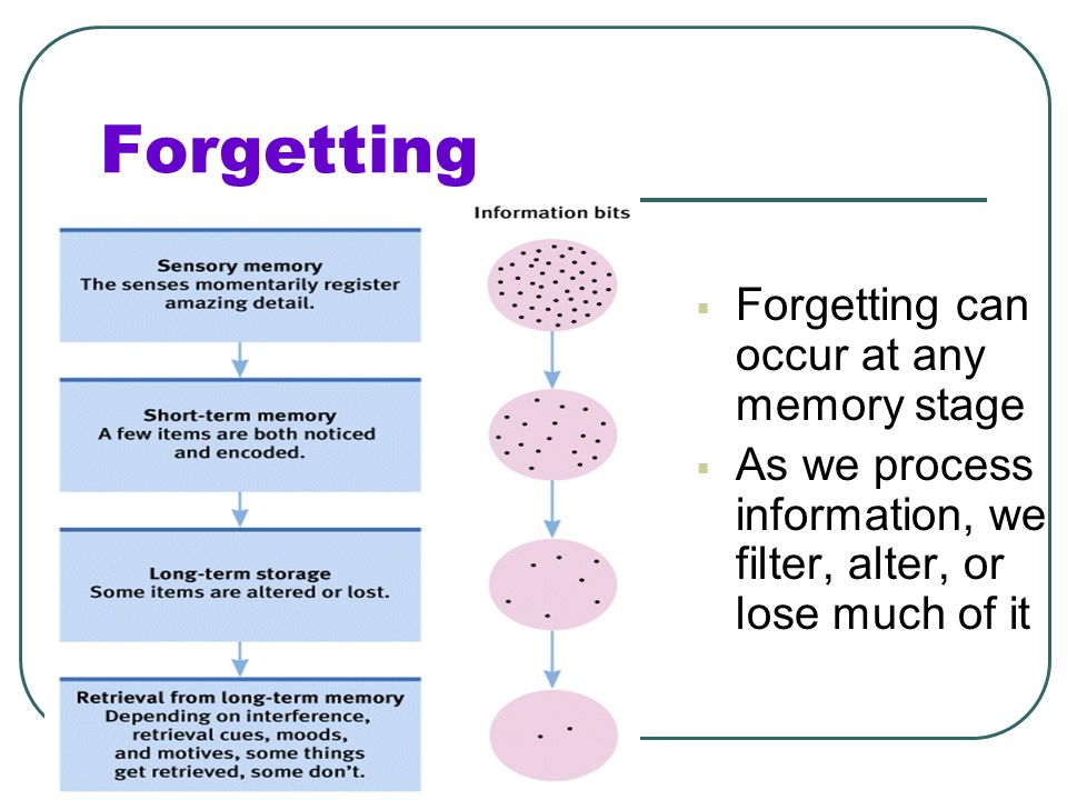 Forgetting Forgetting can occur at any memory stage