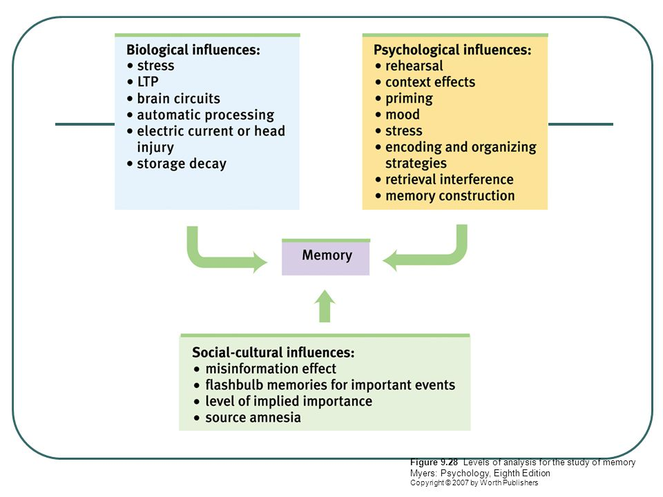 Figure 9.28 Levels of analysis for the study of memory Myers: Psychology, Eighth Edition Copyright © 2007 by Worth Publishers
