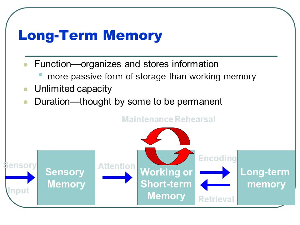 Long-Term Memory Long-term memory Working or Short-term Memory