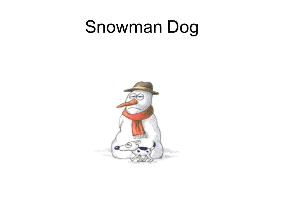 Snowman Dog