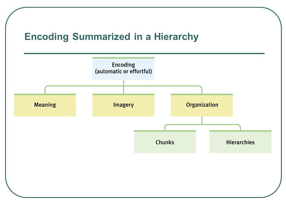 Encoding Summarized in a Hierarchy