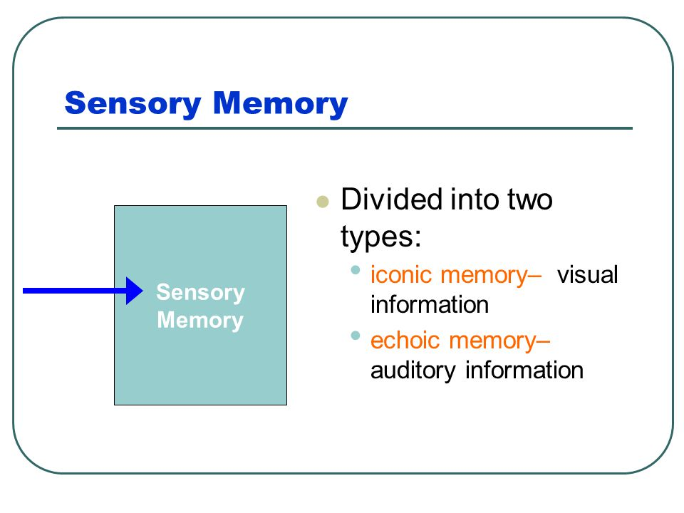 Sensory Memory Divided into two types:
