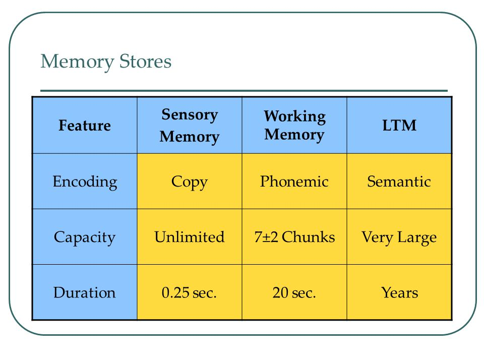 Memory Stores Feature Sensory Memory Working Memory LTM Encoding Copy