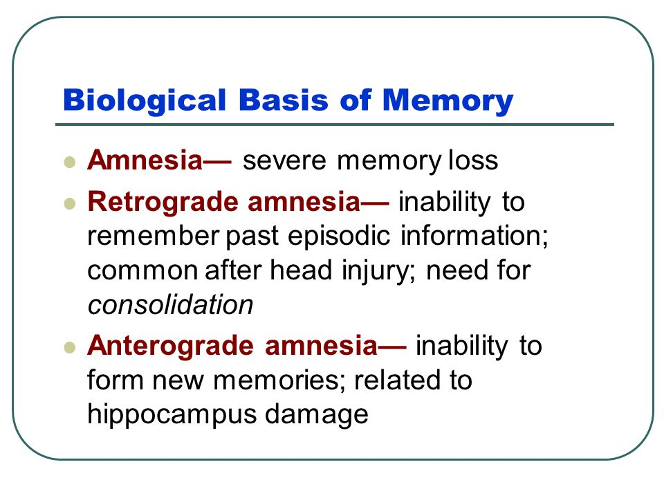 Biological Basis of Memory