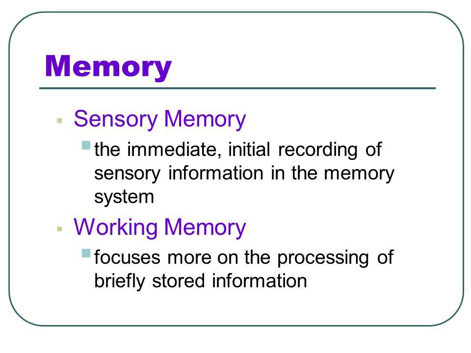 Memory Sensory Memory Working Memory