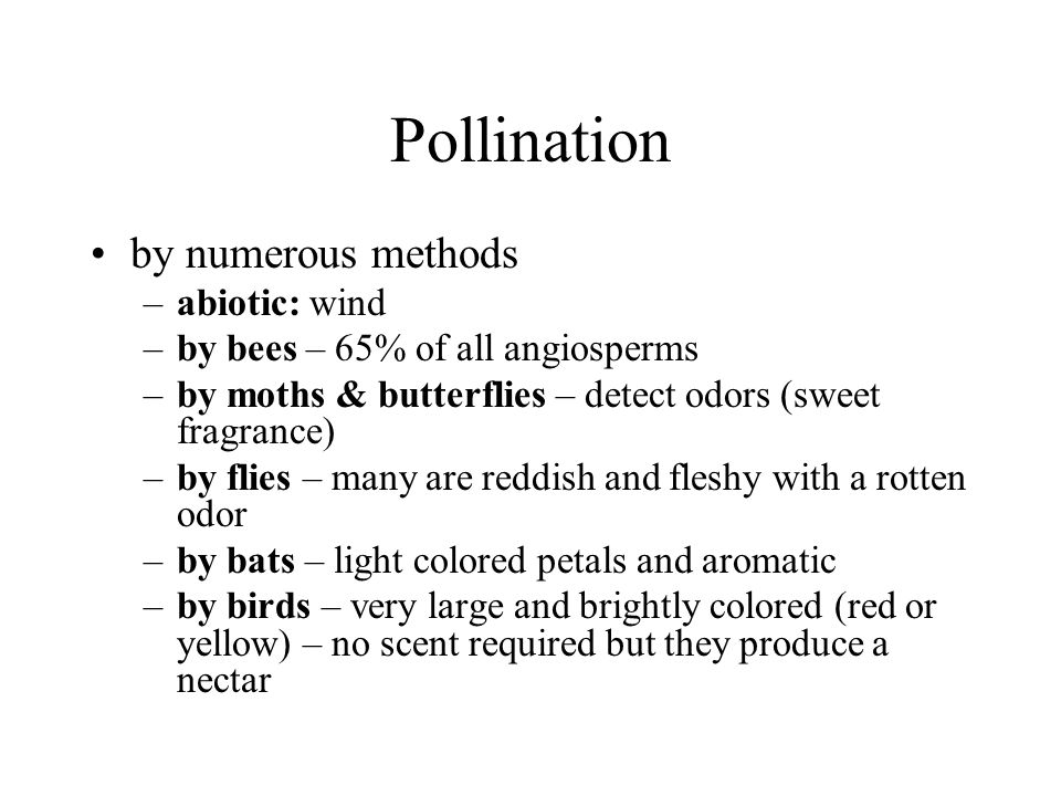 Pollination by numerous methods abiotic: wind