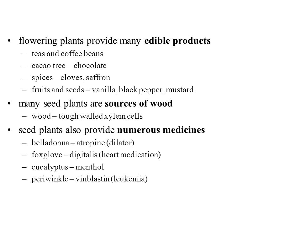 flowering plants provide many edible products