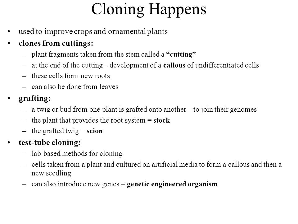 Cloning Happens used to improve crops and ornamental plants