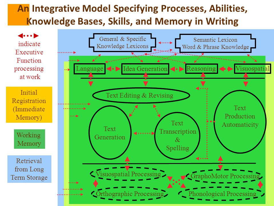 An Integrative Model Specifying Processes, Abilities,