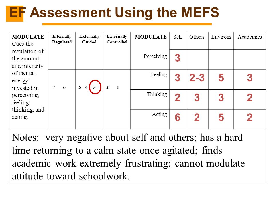 EF Assessment Using the MEFS