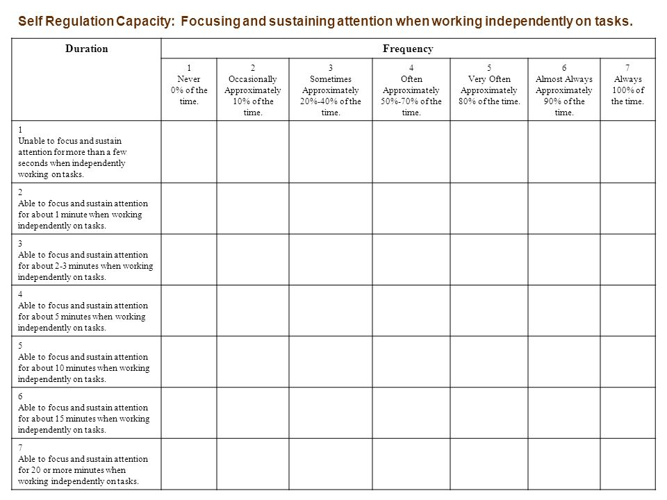Self Regulation Capacity: Focusing and sustaining attention when working independently on tasks.