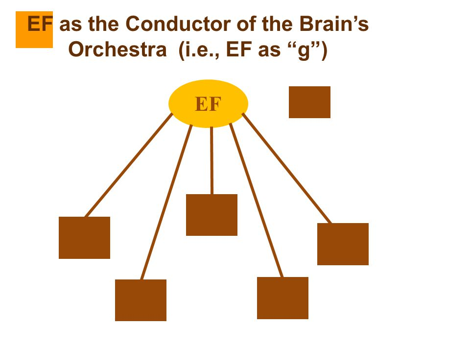 EF as the Conductor of the Brain's Orchestra (i.e., EF as g )