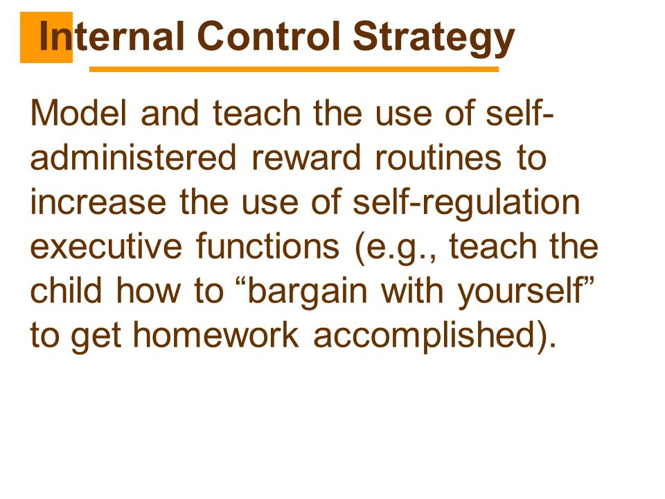 Internal Control Strategy