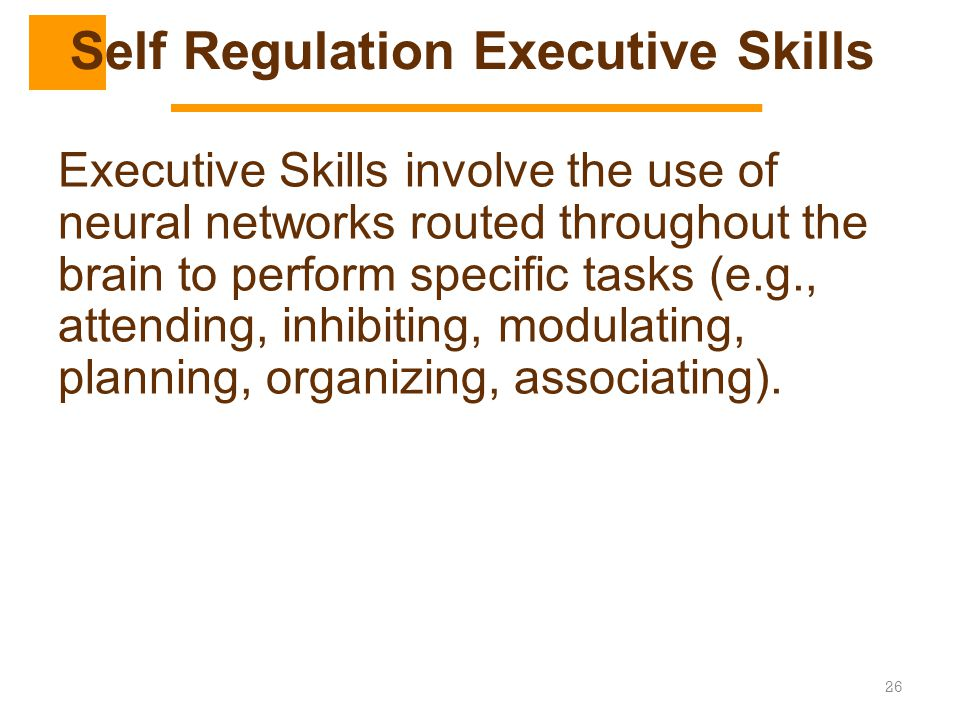 Self Regulation Executive Skills