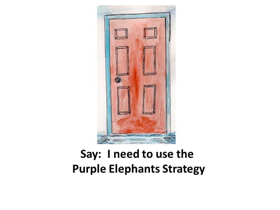 Purple Elephants Strategy