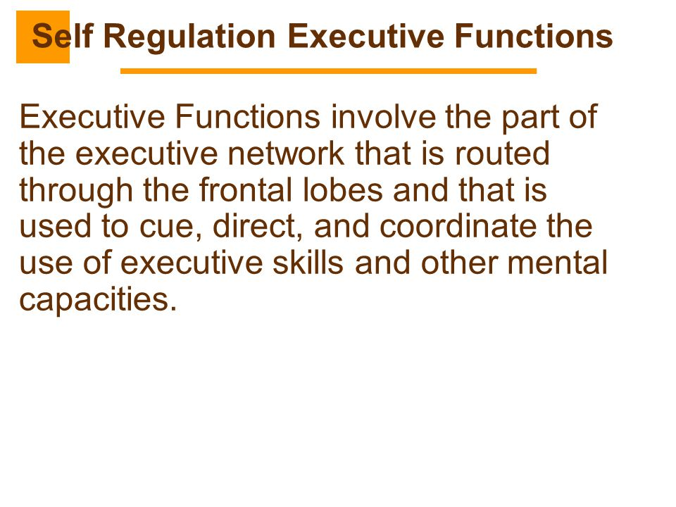 Self Regulation Executive Functions