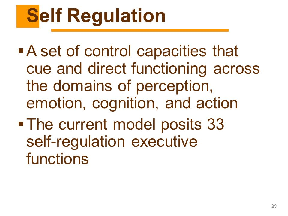 LD Identification Self Regulation.