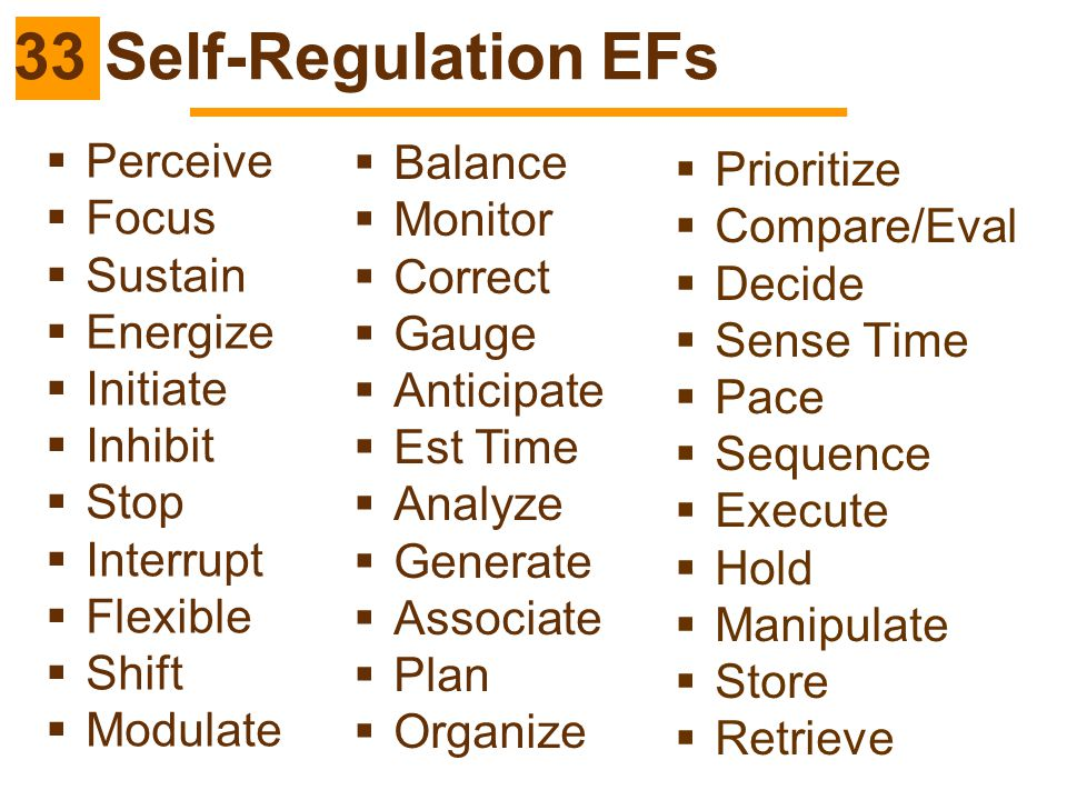 33 Self-Regulation EFs Perceive Balance Prioritize Focus Monitor