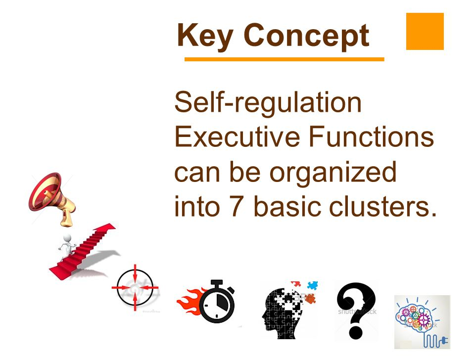 Key Concept Self-regulation Executive Functions can be organized