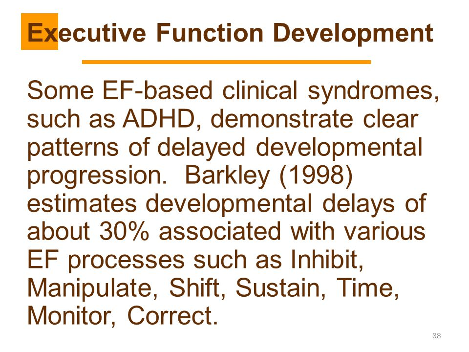Executive Function Development