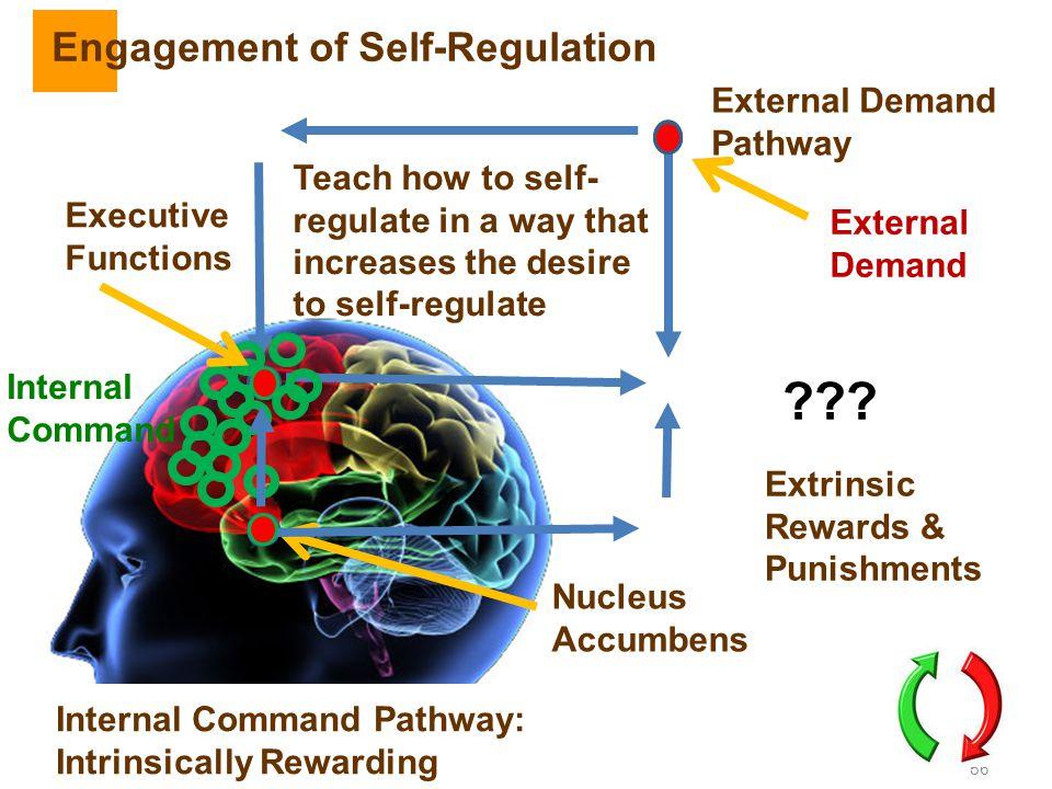 Engagement of Self-Regulation External Demand Pathway