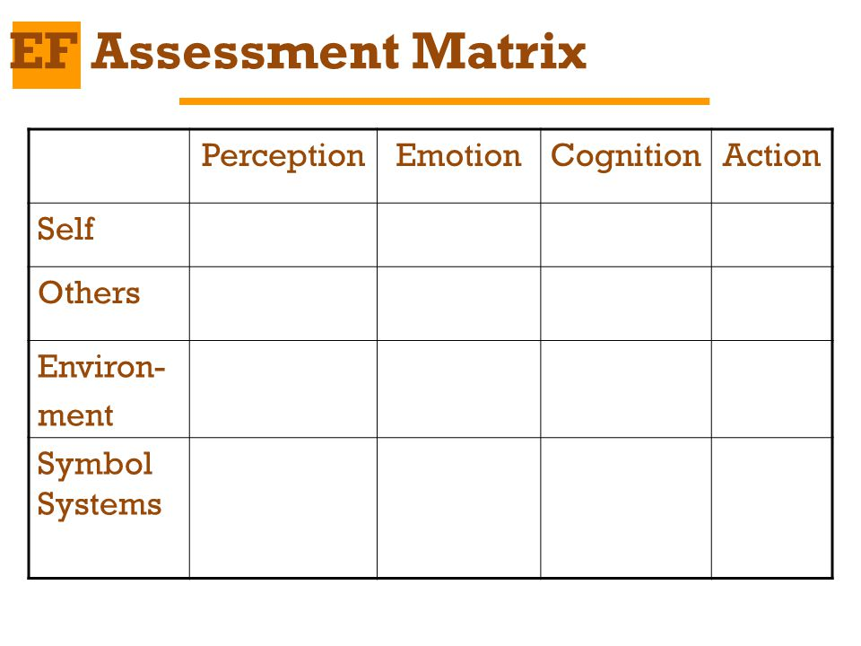 EF Assessment Matrix Perception Emotion Cognition Action Self Others