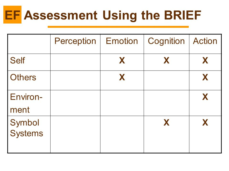 EF Assessment Using the BRIEF