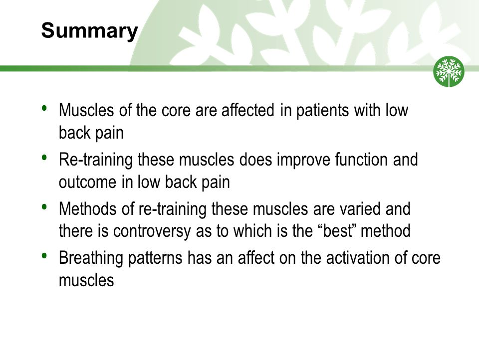 Summary Muscles of the core are affected in patients with low back pain.