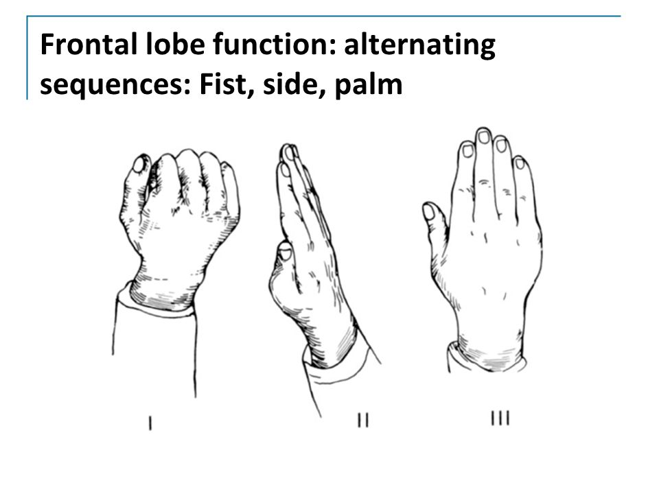Frontal lobe function: alternating sequences: Fist, side, palm