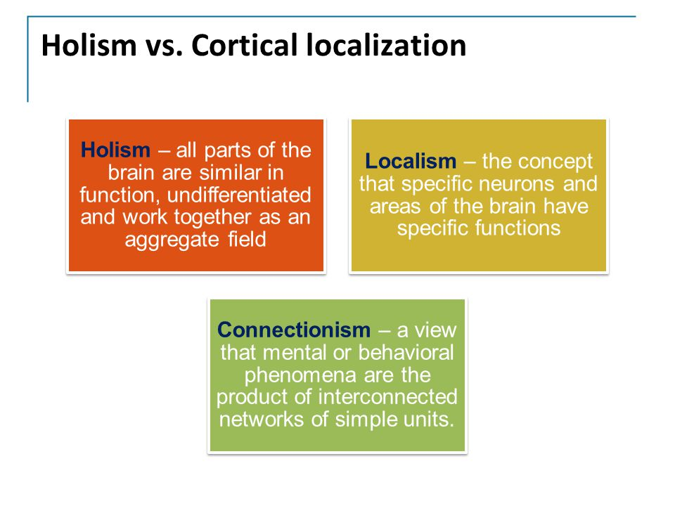 Holism vs. Cortical localization