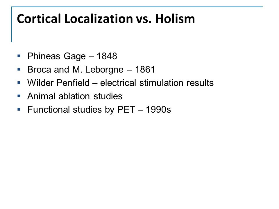 Cortical Localization vs. Holism